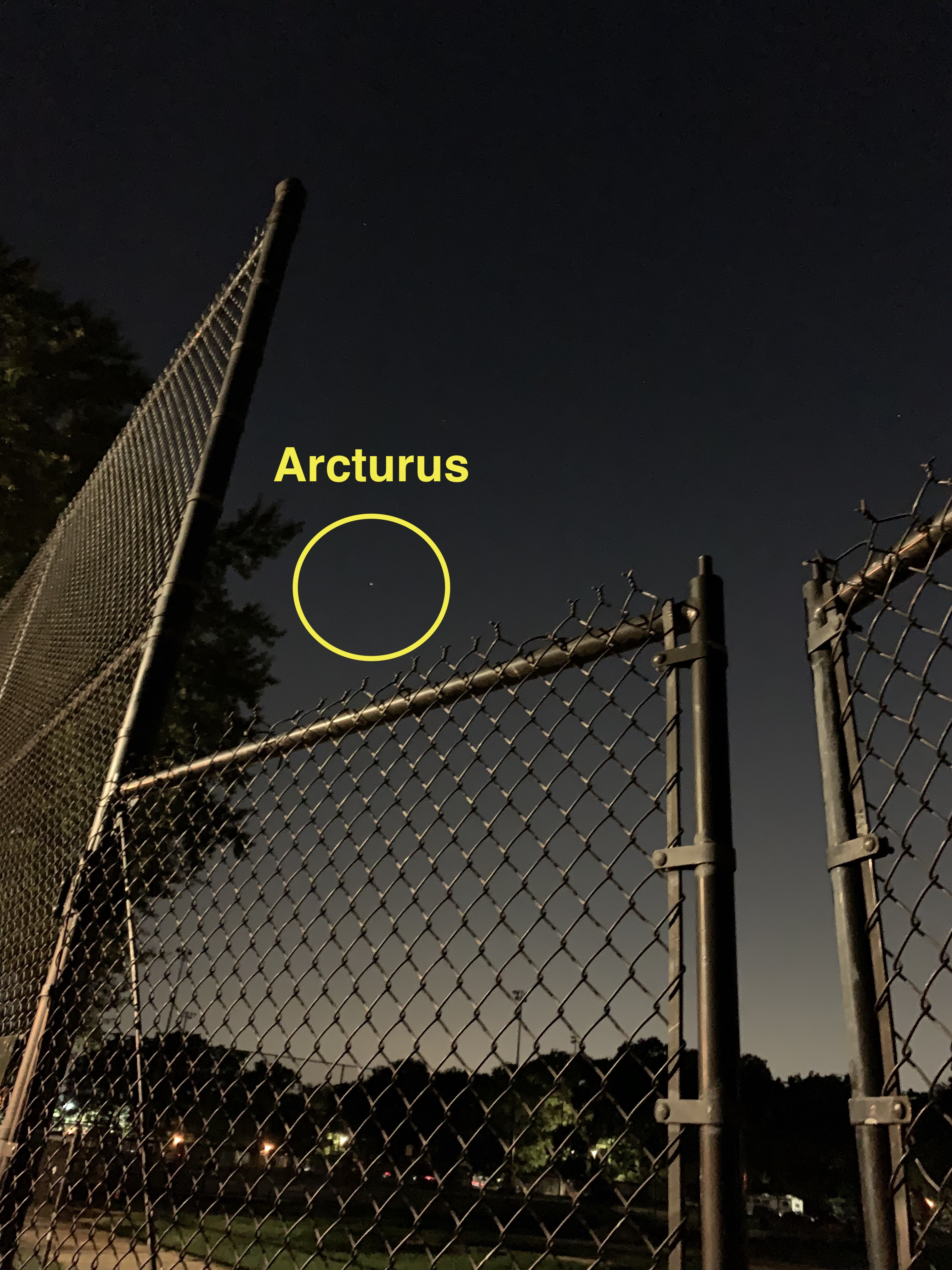View of night sky over a chainlink fence, with one star circled and labeled as Arcturus.
